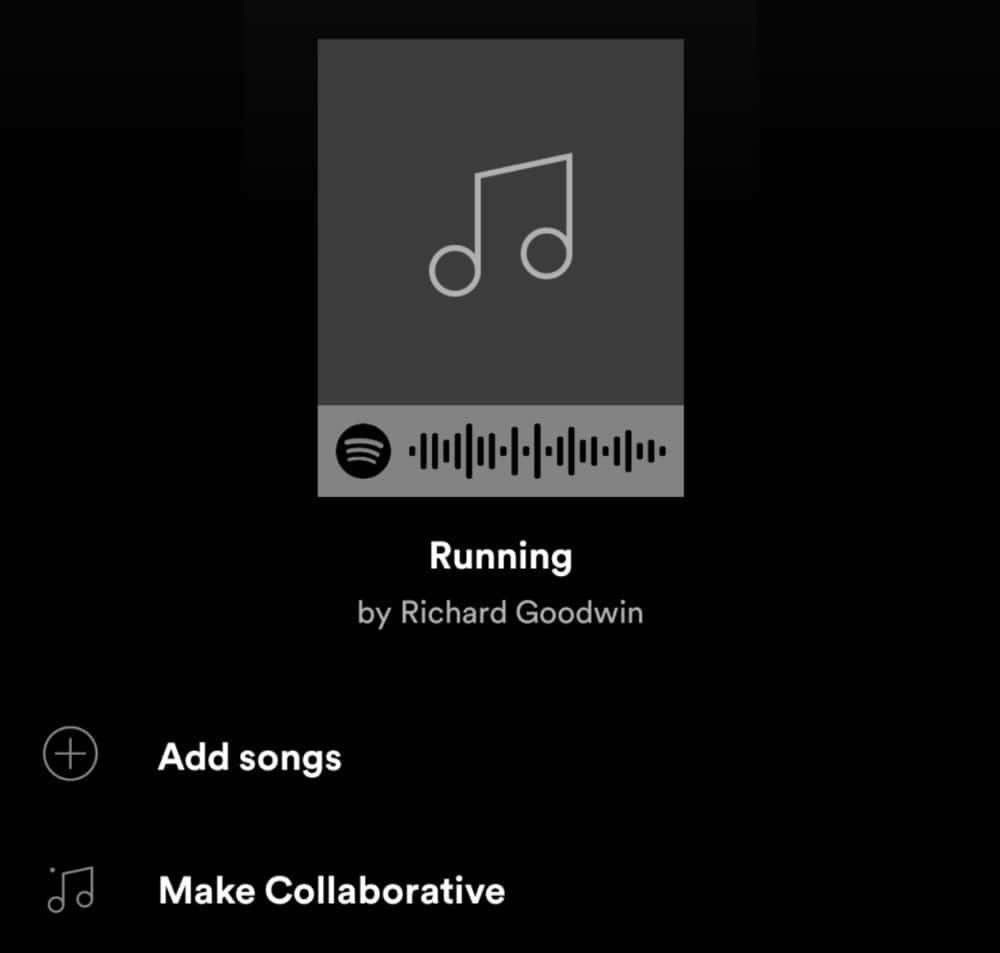 What are Spotify's Secret Feature